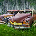 Vintage Frazer Auto Wrecks by Randall Nyhof