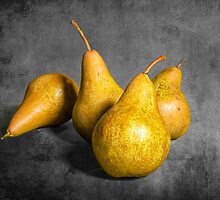 Four Pears on Gray  by Randall Nyhof