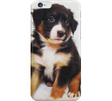 Australian Shepherd Puppy Fire iPhone Case/Skin