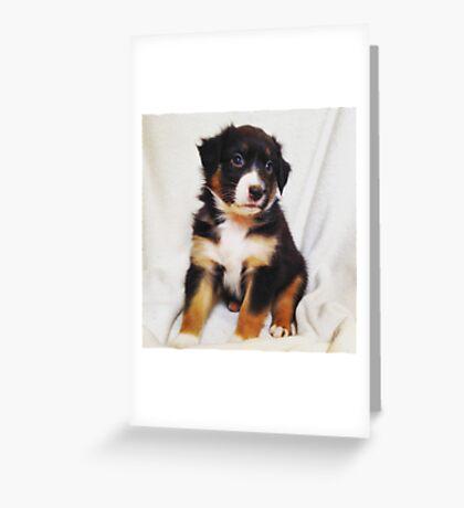 Australian Shepherd Puppy Fire Greeting Card