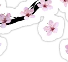 Triangulated Cherry Blossoms Sticker