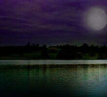 Gatton Hall Lake  by Dave Godden