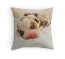 Australian Shepherd Sleeping Beauty Throw Pillow
