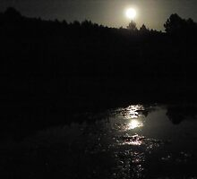 Reflection of a Super Moon by © Betty E Duncan ~ Blue Mountain Blessings Photography