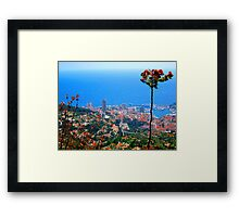 have you caught your thief? Framed Print