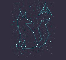 CONSTELLATION FOX Unisex T-Shirt