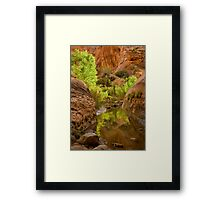 Willow Gulch Framed Print