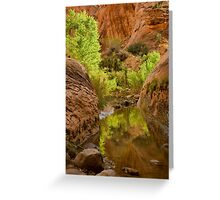 Willow Gulch Greeting Card