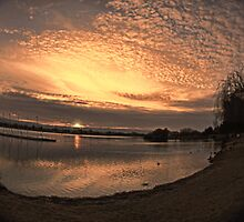 Setting sun in fisheye by happyphotos