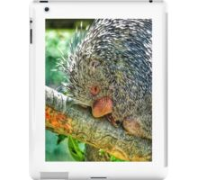 Snuggly when He's Sleeping iPad Case/Skin
