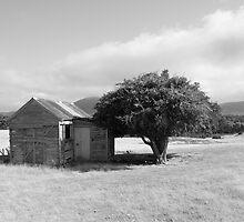 Old Farmhouse 2 by Andrew  Makowiecki