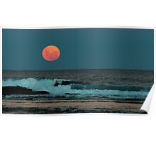 Moon rise over Long Reef Poster