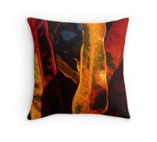 Leaves in Doonan, Queensland, Australia - 2 Throw Pillow