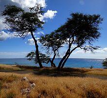 west wild vistas (1) by Angelika Sielken