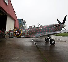 Spitfire TR9 MJ627 adorned with Poppies in a flying tribute to all those who died or suffered during two World Wars by Keith Larby