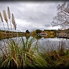 Lake Daylesford by Lisa  Kenny