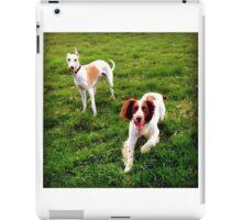 Erich & Monty iPad Case/Skin