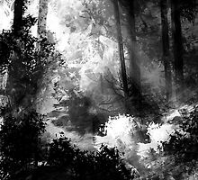 Forest by jaume