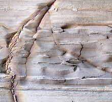 Rock Exposed by Kathie Nichols