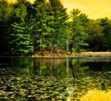 Sunrise Reflection Landscape Sticker