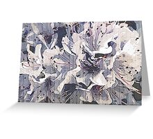 Lavender rodondendron Greeting Card
