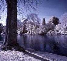Winter Avon by David Cooper
