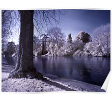 Winter Avon Poster