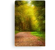 Solitude Path Landscape Canvas Print