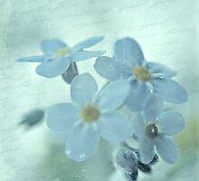 A Little Blue by Shelly Harris
