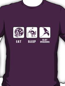 Eat, Sleep, Slay Dragons T-Shirt