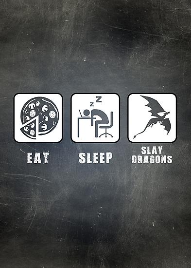 Eat, Sleep, Slay Dragons by thehookshot