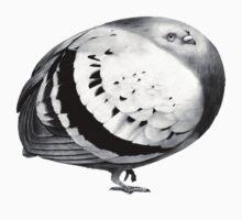 Eggpigeon by Joe Sumner
