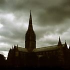 Salisbury Cathedral by William Newland