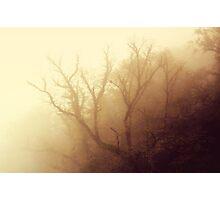 Mystic Photographic Print