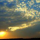 Liquid sunset by Irene  van Vuuren