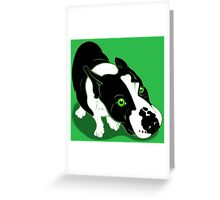 Mr Bull Terrier Green Greeting Card