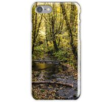 Creeks #44564 iPhone Case/Skin
