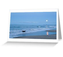 black dog in the moonlight Greeting Card