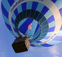 Bella Balloons 1 - Lebanon Ohio by Tony Wilder