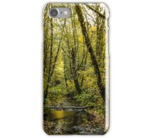 Creeks #88769 iPhone Case/Skin