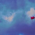 Pink balloons on a blue sky by SRLongstroth