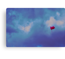 Pink balloons on a blue sky Canvas Print
