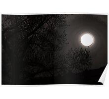 Full Moon Risin Poster