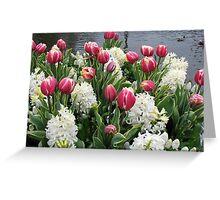 Flowers and Feathers - Keukenhof Gardens Greeting Card