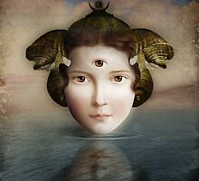 The Mirror by ChristianSchloe