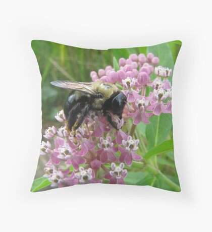 Sated on Purple Butterfly Weed Throw Pillow