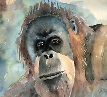 Orangutan by arline wagner