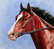 Bay Race Horse by csforest