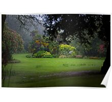 Tropical Mists  Poster