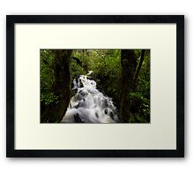 In the Middle of the Green Framed Print